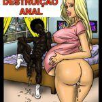 Destruição anal