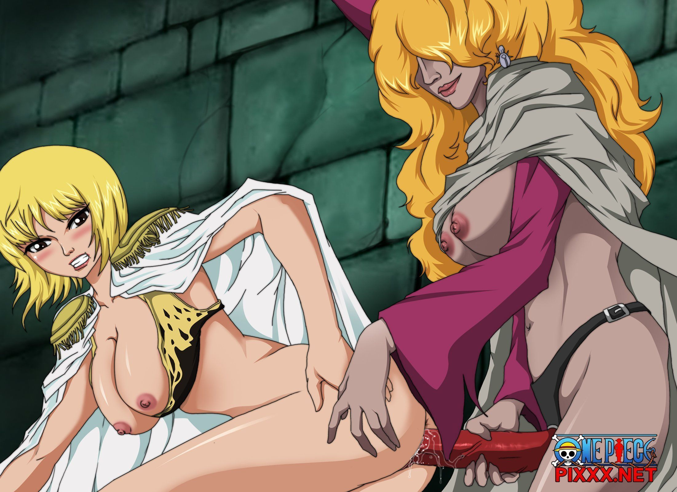 Hentaihome-One-piece-16